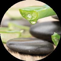 Aloe Vera von Forever Living Products | Der Wohlfühl-Shop von Esther Jaray